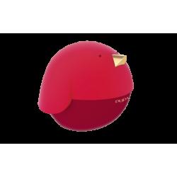 Pupa Bird 1